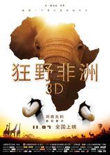 狂野非洲海报