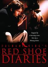 红鞋日记1海报