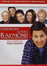人人都爱雷蒙德 第一季海报