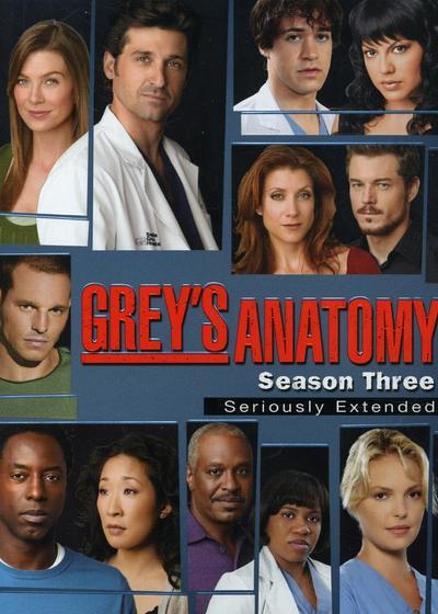 实习医生格蕾 第三季海报