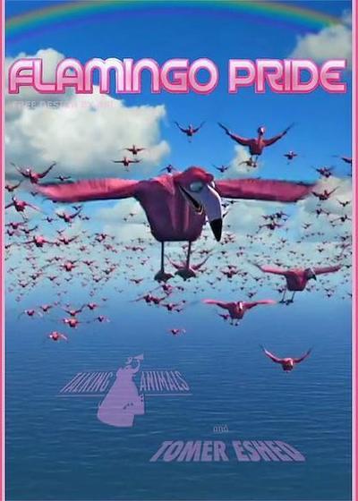火烈鸟的骄傲海报