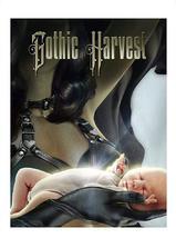 Gothic Harvest海报