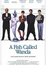 一条叫旺达的鱼海报