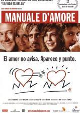 爱情手册海报