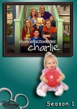 查莉成长日记 第一季海报