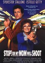 母子威龙海报