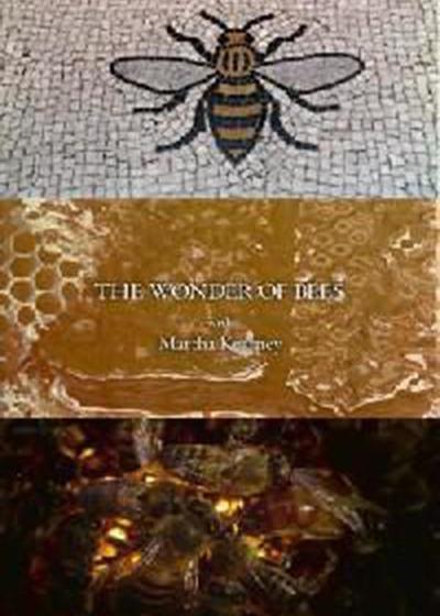 玛莎·卡妮领略神奇的蜜蜂海报