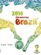 2014年国际足联巴西世界杯