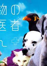 爱心动物医生海报