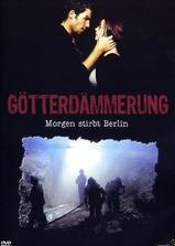 柏林危机海报