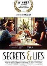 秘密与谎言海报