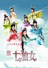 天地姻缘七仙女海报