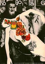 帕戈罗格海报