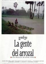 稻田里的人们海报