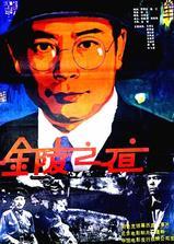 金陵之夜海报