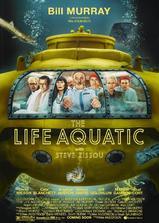 水中生活海报