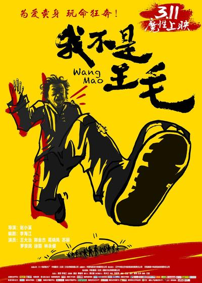 我不是王毛海报