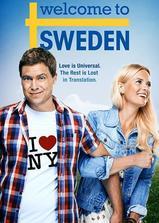 欢迎来到瑞典 第一季海报