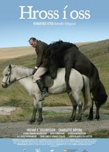 马与人海报