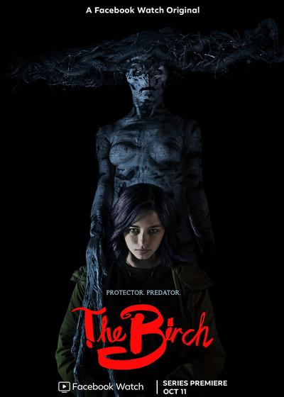 白桦林的女巫海报