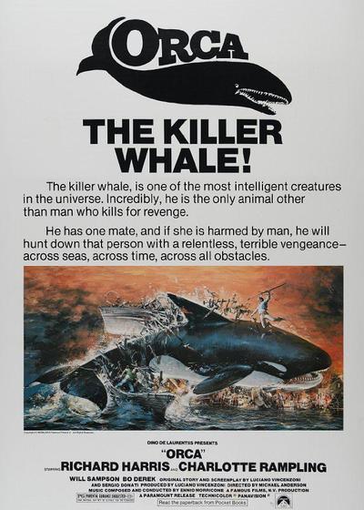 杀人鲸海报
