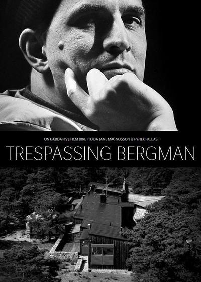 打扰伯格曼海报