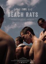 沙滩鼠海报