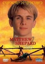 马修·谢巴德的故事海报