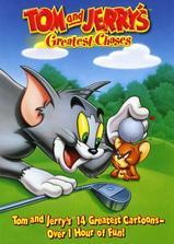 猫和老鼠海报