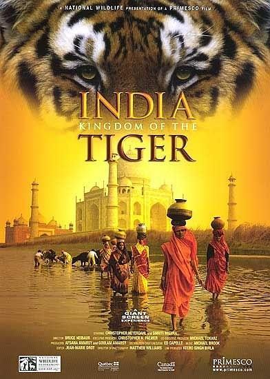 印度:老虎王国海报