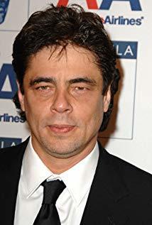 本尼西奥·德尔·托罗 Benicio del Toro演员