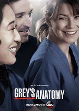 实习医生格蕾 第十季海报