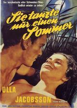 一个快乐的夏天海报