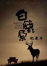 白鹿原纪录片海报