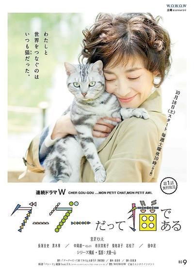 咕咕是一只猫海报