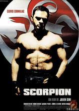 蝎子拳王海报