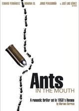 口中的蚂蚁海报