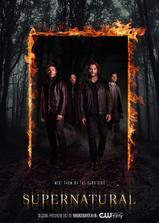 邪恶力量 第十二季海报