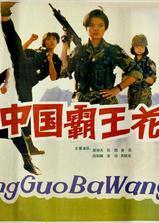 中国霸王花海报