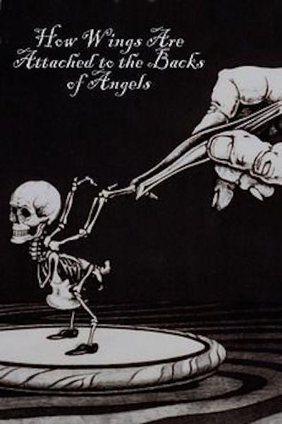 天使羽翼的诞生