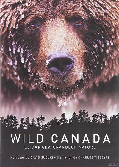 野性加拿大海报