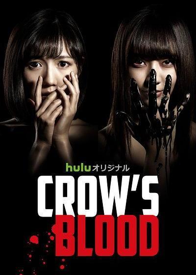乌鸦血海报