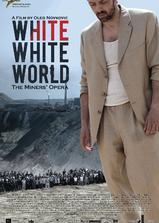 白白的世界海报
