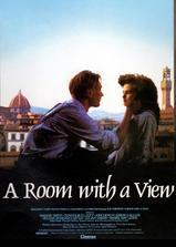 看得见风景的房间海报