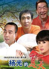 杨光的夏天海报