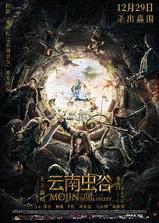 云南虫谷海报
