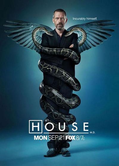 豪斯医生  第六季海报