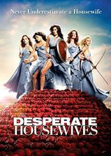 绝望主妇 第六季海报