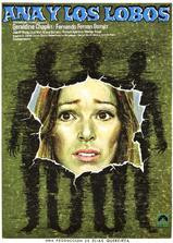 安娜和狼海报