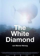 白钻石海报